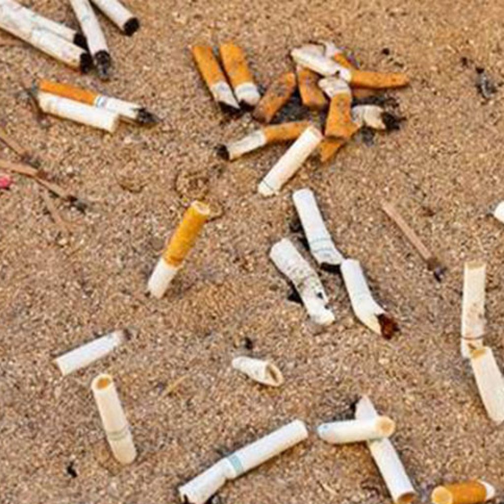 Online Simulation Model to Estimate the Total Costs of Tobacco Product Waste in Large U.S. Cities